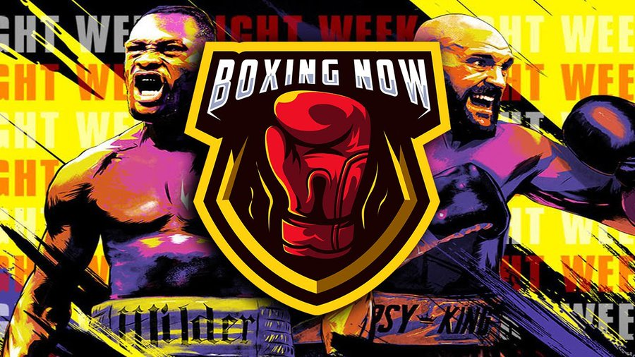 Deontay Wilder vs Fury 2